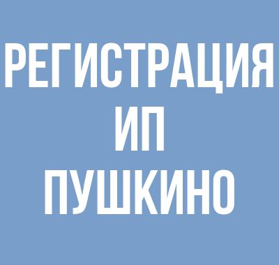 Регистрация ИП в Пушкино
