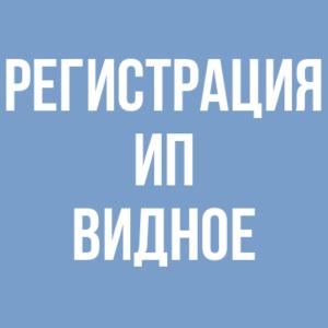 Регистрация ИП в Видном